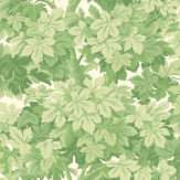 Cole & Son Great Vine Green Wallpaper - Product code: 98/10045