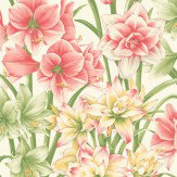 Cole & Son Exotiks Pink / Yellow / Green Wallpaper - Product code: 98/6023