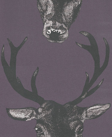 Graduate Collection Stag Head Plum Wallpaper main image
