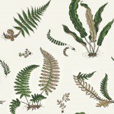 G P & J Baker Ferns Green / Cream Wallpaper