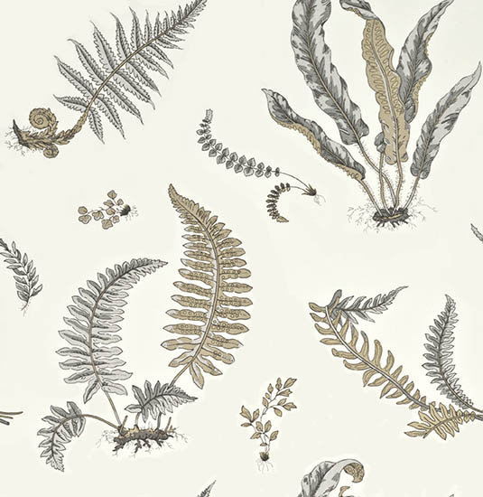 G P & J Baker Ferns Dove Grey / Silver Wallpaper - Product code: BW45044/4