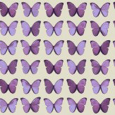 Albany Papillon  Plum Wallpaper