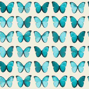 Albany Papillon  Teal Wallpaper main image