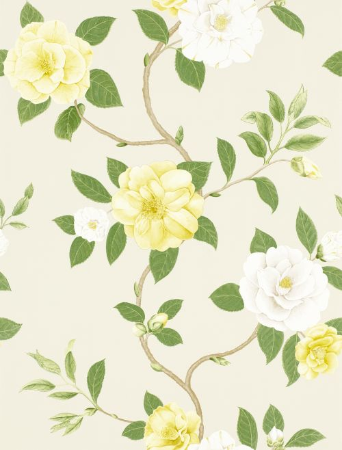 Sanderson Christabel Yellow / Green Wallpaper main image