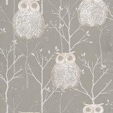 Blendworth Tawny Owl - Grey  Wallpaper