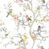 Albany Bird Watch White Wallpaper