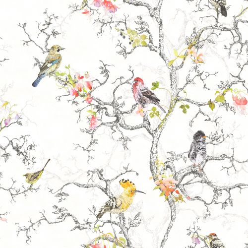 Albany Bird Watch White Wallpaper - Product code: 97892