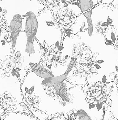 Prestigious Songbird Dove Grey Wallpaper main image