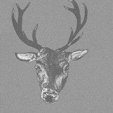 Graduate Collection Stag Print Grey Wallpaper
