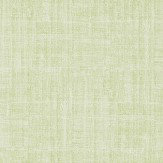 Sanderson Washi Olive Green Wallpaper - Product code: 213727