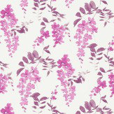 Sanderson Wisteria Blossom  Berry Plum Wallpaper - Product code: 213743