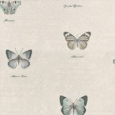 Albany Butterfly White/Blue White / Blue Wallpaper
