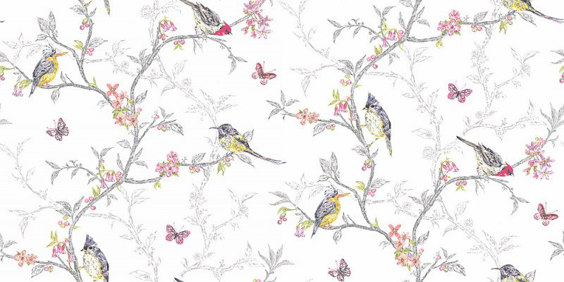 Phoebe By Albany White Wallpaper Direct