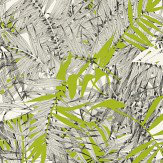 Christian Lacroix Eden Roc Green Green / Black / White Wallpaper