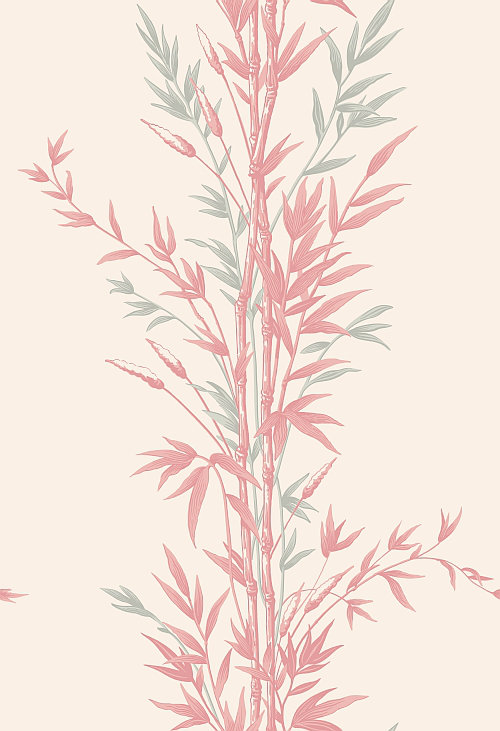 Cole & Son Bamboo  Pink Wallpaper - Product code: 100/5024