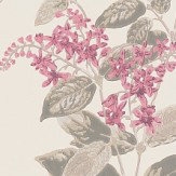 Cole & Son Madras Violet  Pink Wallpaper - Product code: 100/12058