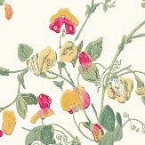 Cole & Son Sweet Pea  Pink & Yellow Wallpaper