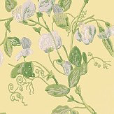 Cole & Son Sweet Pea  Yellow Wallpaper