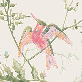 Cole & Son Hummingbirds  Soft Multi-Colour Wallpaper - Product code: 100/14067