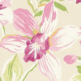 Sanderson Samaya  Berry/Cream Fabric - Product code: 223572