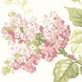 G P & J Baker Lilac Blossom Willow/ Rose Wallpaper