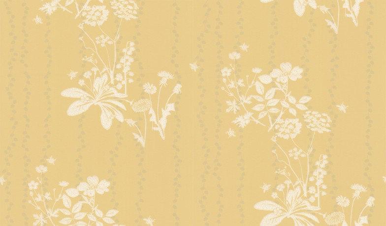 Image of Barneby Gates Wallpapers Wild Meadow Dandelion, BG0200102