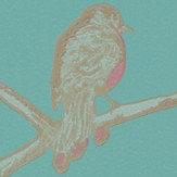 Barneby Gates The English Robin Jade Wallpaper