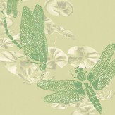 Barneby Gates Dragonfly Apple Green Wallpaper