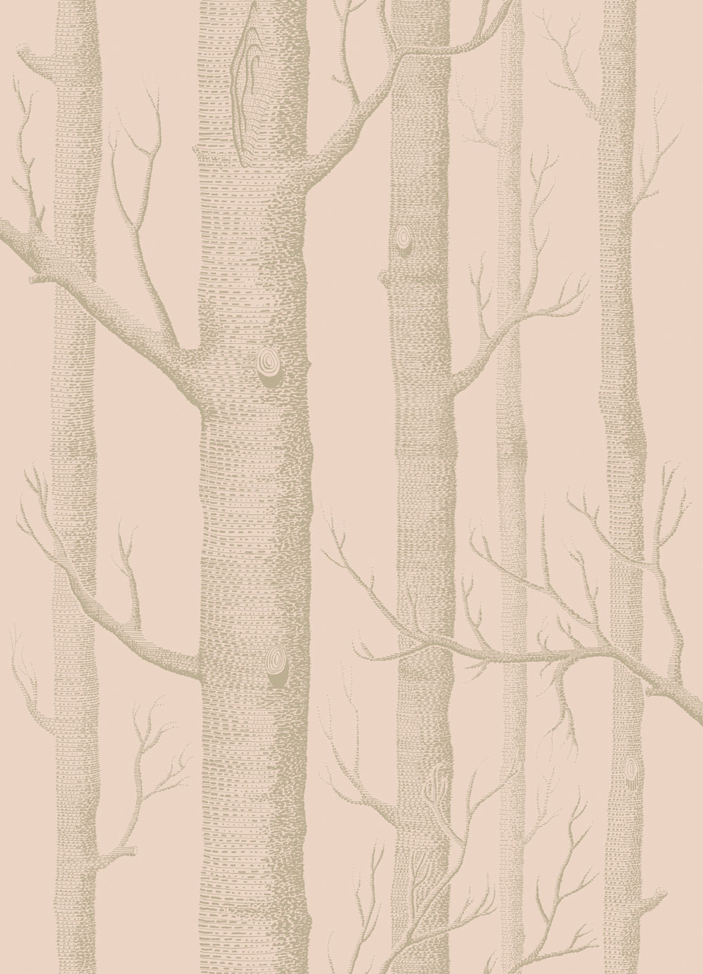 Woods by Cole & Son - Pink and Gilver : Wallpaper Direct