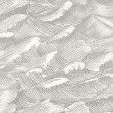 Cole & Son Columbus Black & White Wallpaper