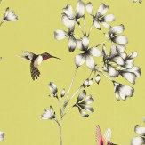 Harlequin Amazilia Gooseberry Wallpaper - Product code: 111061