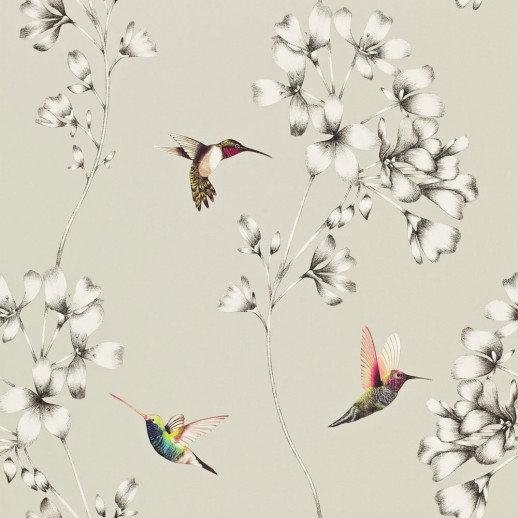 Harlequin Wallpapers Amazilia, 111062