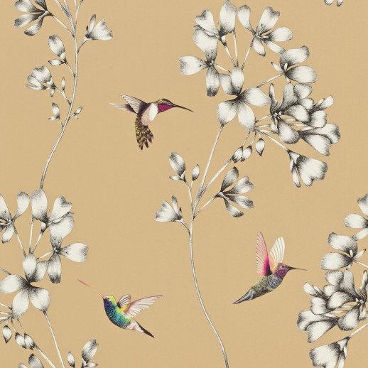 Harlequin Wallpapers Amazilia, 111063