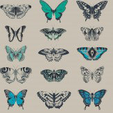 Harlequin Papilio Indigo Wallpaper - Product code: 111078
