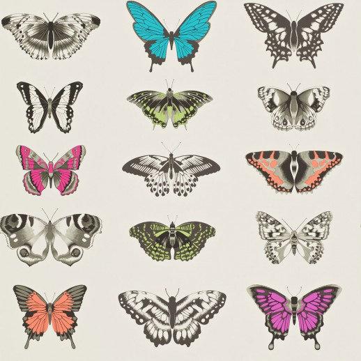 Harlequin Wallpapers Papilio, 111079