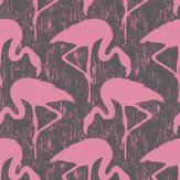 Sanderson Flamingos Charcoal / Pink Wallpaper