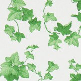Sanderson Hedera Green Wallpaper