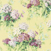 Sanderson Sweet Williams Linden / Mulberry Fabric - Product code: 224332