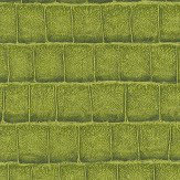 Albany Grasscloth Green Wallpaper
