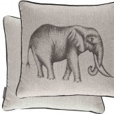 Savannah Cushion