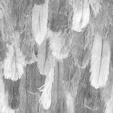 Albany Ostrich Feathers Effect Grey Wallpaper