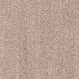 Anthology Igneous Shell Wallpaper - Product code: 111139