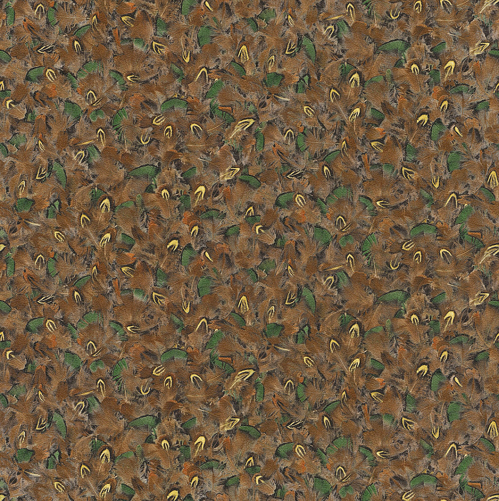 Albany Duck Feathers Brown and Green Wallpaper - Product code: 514728