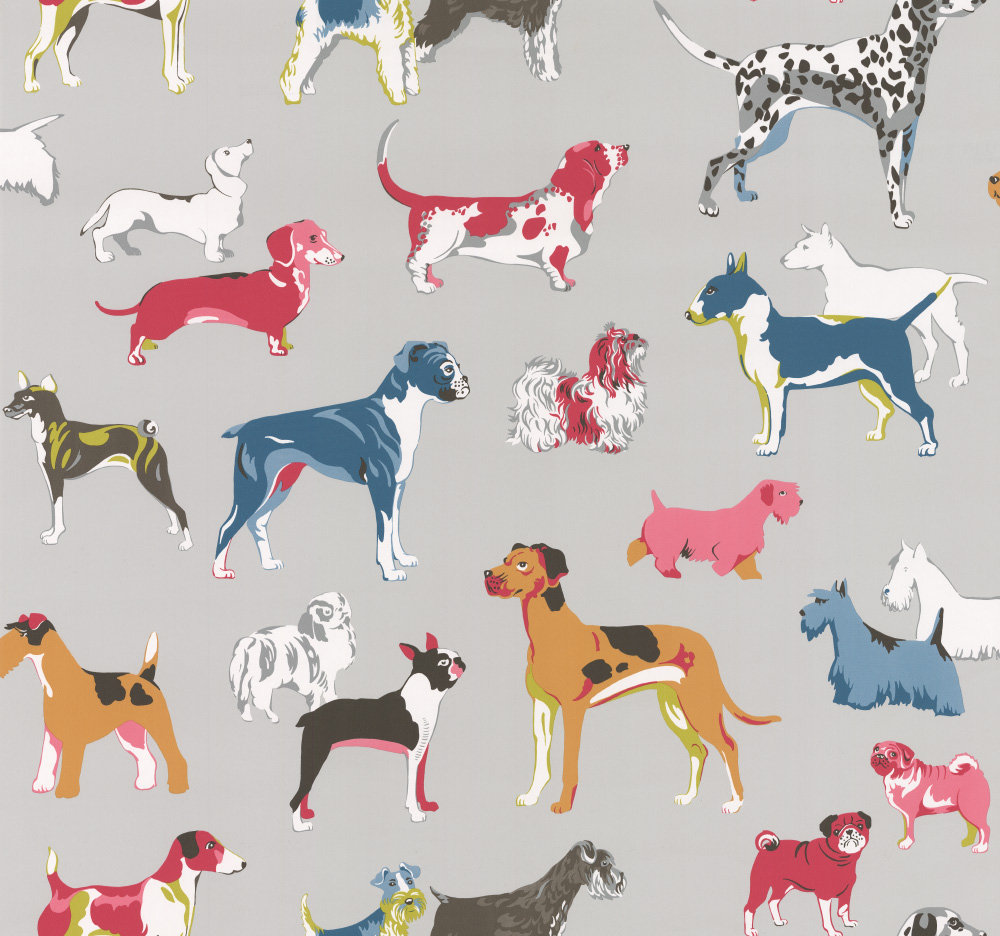 Jane Churchill Hot Dogs Grey Wallpaper main image