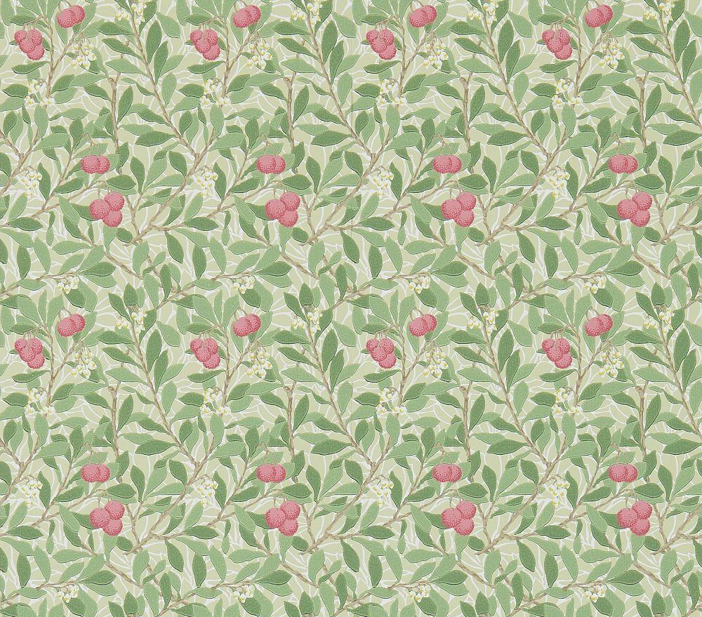 Morris Arbutus Olive / Pink Wallpaper - Product code: 214720