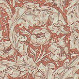Morris Bachelors Button Russet Wallpaper