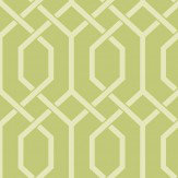 Today Interiors Hexagonal Trellis Spring Green Wallpaper