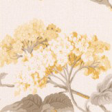 Albany Elderflower Yellow Wallpaper