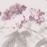 Albany Elderflower Mulberry Wallpaper