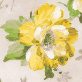 Albany Summer Meadow Yellow Wallpaper